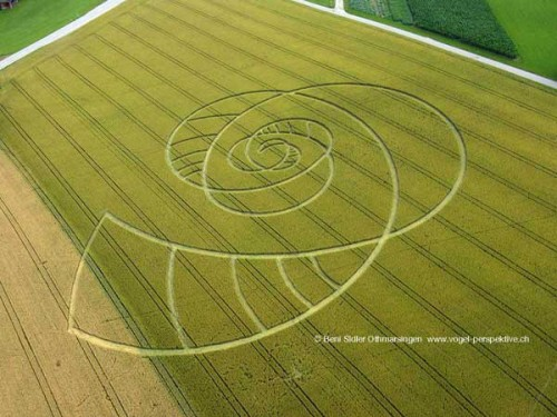 Crop Circle in Switzerland