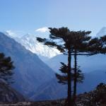 Nepal 1984