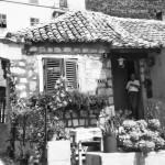 My Dubrovnik home