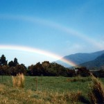 New Zealand 1986