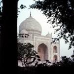 India 1984