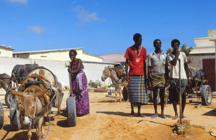 Somali Waterboys
