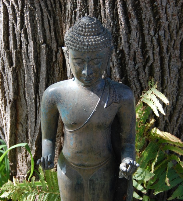 Buddha in Fall