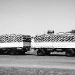 Food Trucks Somalia